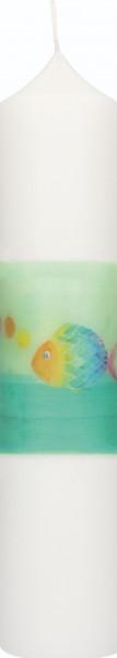 Kommunionkerze, Druckmotiv Regenbogenfisch