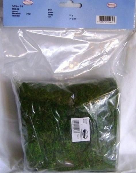 Moos 70 Gramm, grün, Krippenzubehör oder für Modellbau