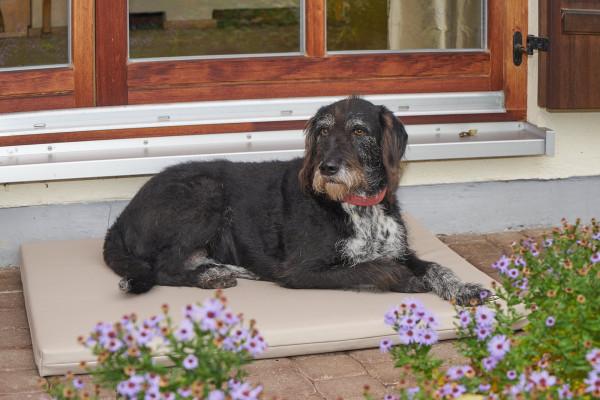Tukan Bodenmatte Happiness Farbe beige mit Hund
