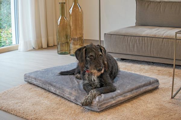 Tukan Bodenmatte Kuschel-Edition Farbe lichtsilber mit Hund